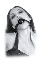 Beginners Ball Gag